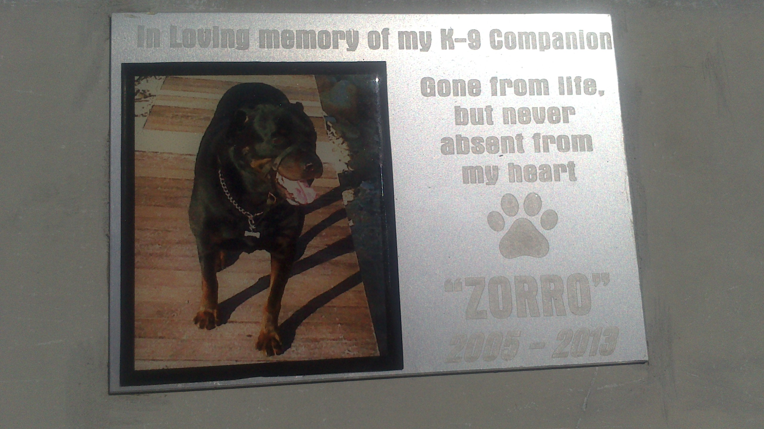 plaque for deceased dog on bench
