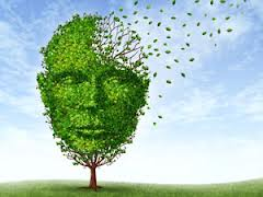 illustration of tree as brain losing leaves