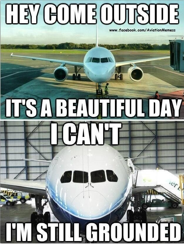 Plane Grounded Internet Meme
