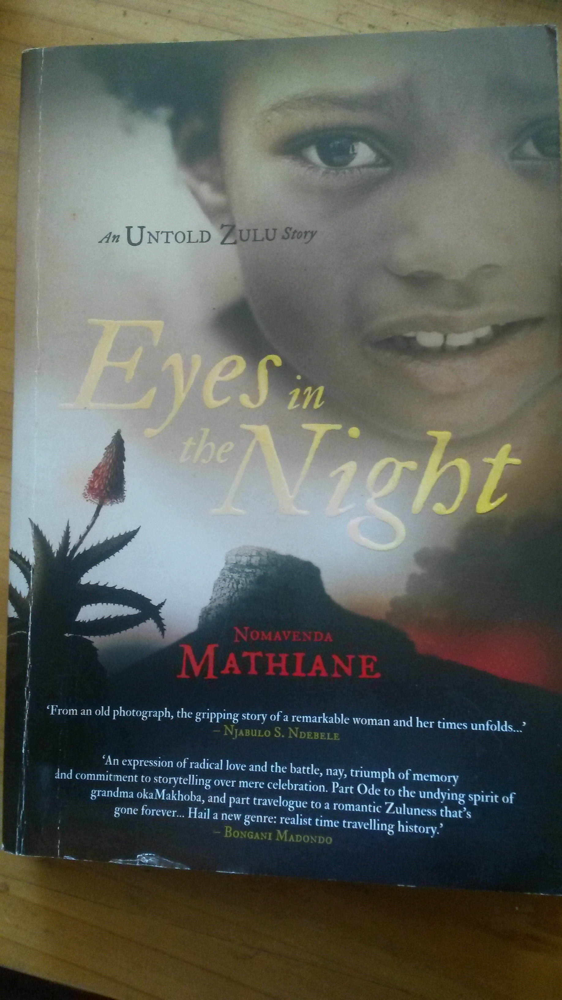 Eyes in the Night by Nomavenda Mathiane