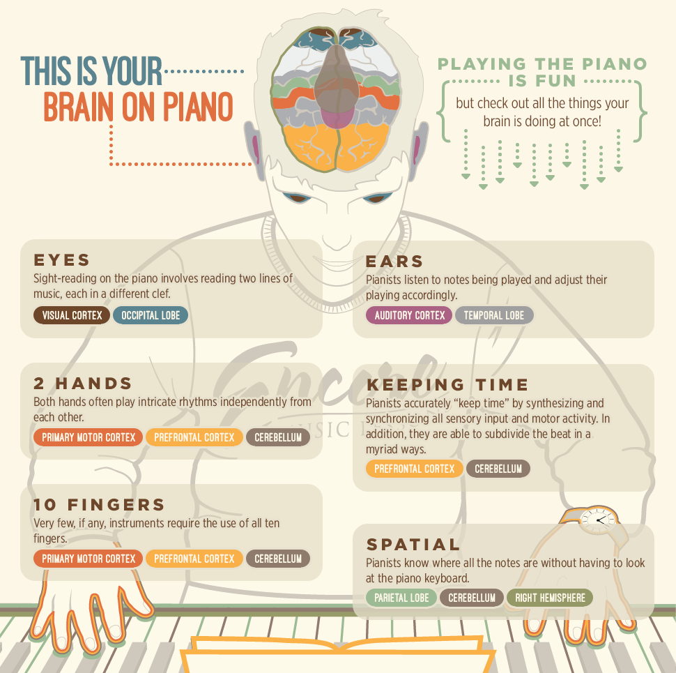 infographic on piano lessons good for brain